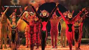 News video: A bug's life: The Cirque du Soleil bring their latest show 'OVO' featuring a carnival of acrobatic insects, to London's Royal Al