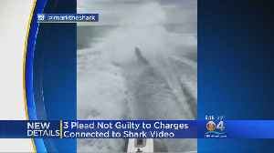 News video: 3 Plead Not Guilty To Charges Linked To Shark Dragging Video
