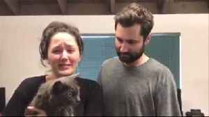 News video: Couple Cries as They're Reunited With Lost Cat Following California Mudslide