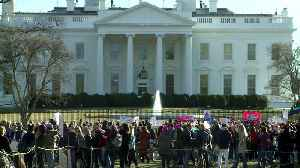 News video: Thousands Attend Women`s March in Washington, D.C. With Focus on Women in Politics