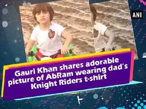 News video: Gauri Khan shares adorable picture of AbRam wearing dad's Knight Riders t-shirt