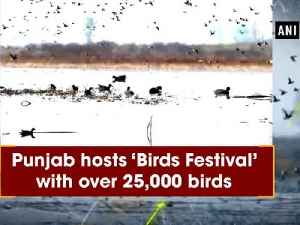 News video: Punjab hosts 'Birds Festival' with over 25,000 birds