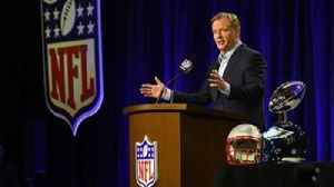 News video: Roger Goodell: NFL should 'start over' with catch rule