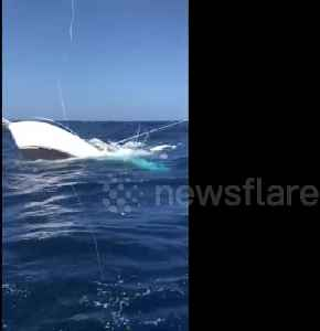 News video: Fishermen rescue crew from sinking boat in Caribbean