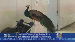 News video: United Changing Rules For Emotional Support Animals