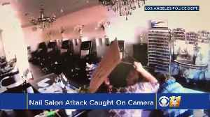News video: Sisters Fight Off Carjacking Suspect In Los Angeles Nail Salon Attack