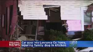 News video: Car Crashes Into Hickory Twp. Home, Pins Family Dog