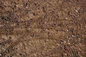 News video: Scientists Discover Possible New Antibiotic in Dirt