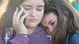 News video: Seventeen People Were Killed in a School Shooting in Florida Yesterday And More News