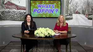 News video: What's Poppin' 2-14-18