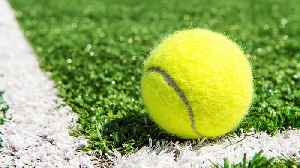 News video: Internet Can't Decide If Color Of Tennis Ball Is Yellow Or Green