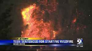 News video: Teen who started Columbia River Gorge wildfire pleads guilty