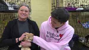 News video: California Family Flies Across the Country to Adopt Cat with Same Condition as Son
