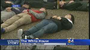 News video: Gun Control Protest In Front Of White House