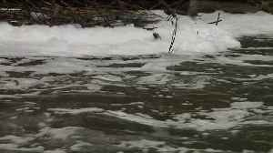 News video: Mysterious, Sudsy Foam Returns to Pennsylvania Creek
