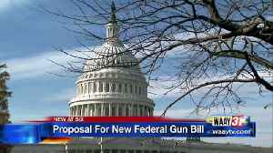 News video: Federal Gun Bill