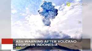 News video: Mount Sinabung blows in Indonesia, creating flight chaos