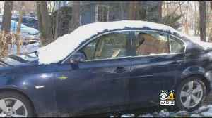 News video: Cars Broken Into, Windows Smashed In Milton