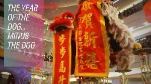 News video: The chicken coup on the Chinese year of the dog