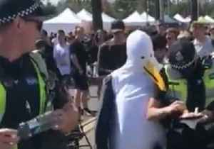 News video: 'Seagulls' Chase Australian Police Officers for Their French Fries