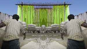 News video: Green is the new black