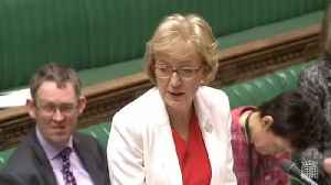 News video: Andrea Leadsom Says Brexit Is 'Less Mad Max And More Love Actually'
