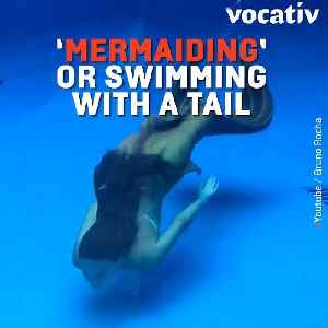 """News video: Brazilian """"Mermaids"""" Warned Against Wearing Tails in Water After Trend Goes Viral"""