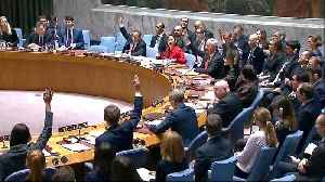 News video: UN Security Council votes in favour of 30-day Syria ceasefire