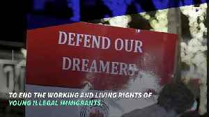 News video: Supreme Court Rejects Trump's Appeal in 'Dreamers' Case