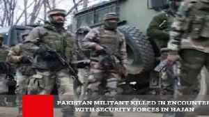 Pakistan Militant Killed In Encounter With Security Forces In Hajin [Video]