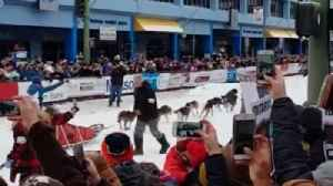 News video: And Go! Iditarod's Ceremonial Start Kicks Off in Anchorage
