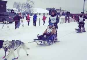 News video: Dogs, Sleds, and Snow: The Iditarod Trail Race Begins