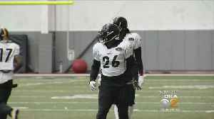 News video: Report: Steelers To Use Franchise Tag On Le'Veon Bell