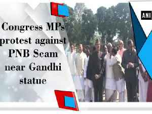 News video: Congress MPs protest against PNB Scam near Gandhi statue