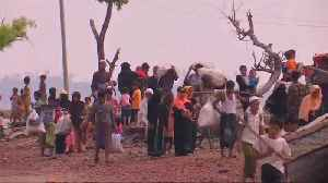 News video: 'Ethnic cleansing' of Rohingya continues says UN envoy