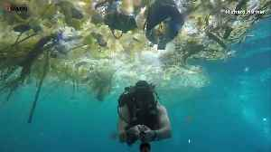 News video: Diver Records Plastic Waste Ravaging the Waters Near Bali