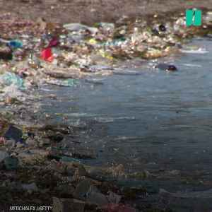 News video: A Diver's Jarring View Of Ocean Pollution