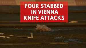 News video: Four people seriously injured in Vienna knife attacks