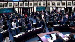 News video: Florida moves one step closer to gun control reforms