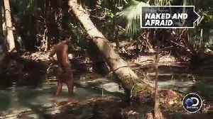 News video: 'Naked And Afraid' Star Gets Stung On Penis Tip By Yellowjacket