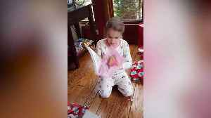 News video: Girl with Alzheimers says I love you for last time