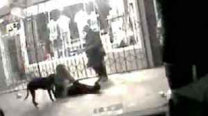 News video: Los Angeles Prosecutors Won't Charge Officer In Death Of Unarmed Man
