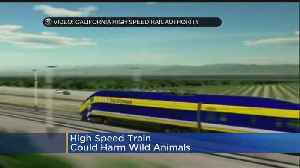 News video: Cost Of California High-Speed Rail Project Keeps Going Up