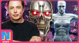 News video: Elon Musk Says AI Ready To Kill Humanity, Westworld's Season 2 Details Revealed | Nerdwire News