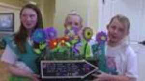 News video: Girl scout celebrates 106 year of service