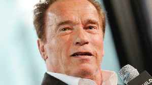 News video: Arnold Schwarzenegger Reveals Major Actor For Twins Sequel