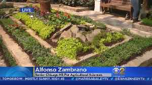 News video: Agricultural School Students Create Secret Garden At Navy Pier