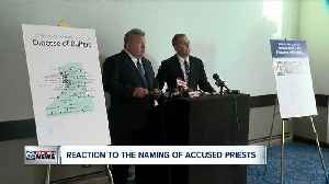 News video: Reaction to accused priests being named