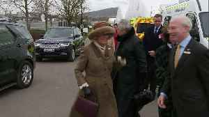 News video: Duchess of Cornwall arrives at Cheltenham Festival
