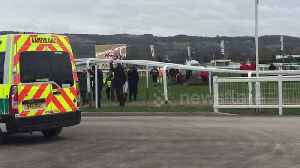 News video: Jockey Ruby Walsh falls off horse at Cheltenham Festival 2018